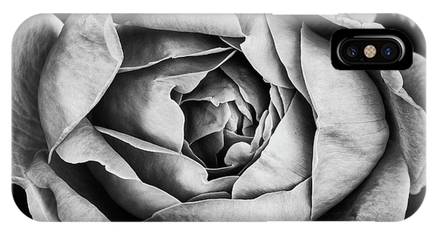 Rose IPhone X Case featuring the photograph Rose Closeup In Monochrome by Vishwanath Bhat