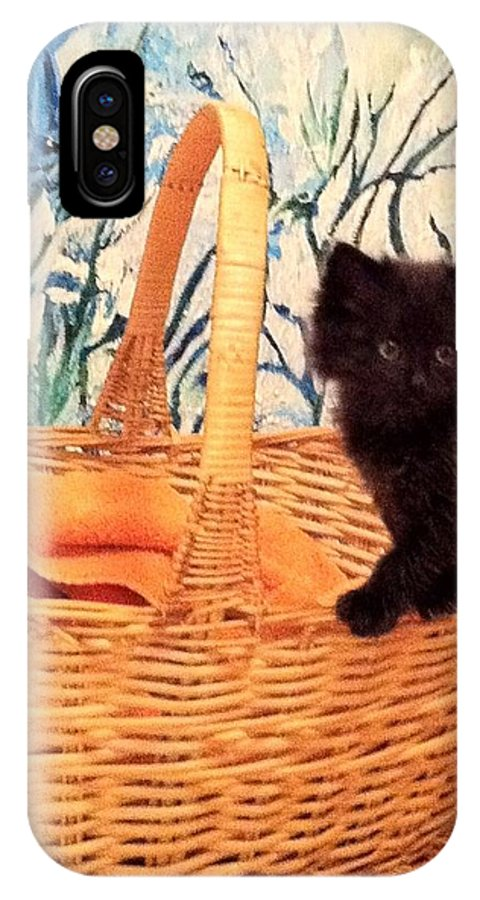 Cat Kitten Basket IPhone X Case featuring the photograph Sassy Cat by Deb Schneider