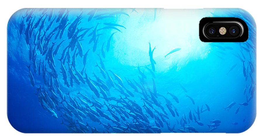 Bigeye IPhone X Case featuring the photograph School Of Bigeye Jacks by Dave Fleetham - Printscapes