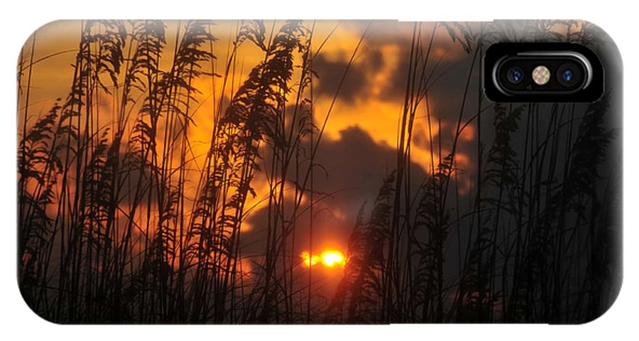 Sea Oats IPhone X Case featuring the photograph Sea Oats by David Lee Thompson