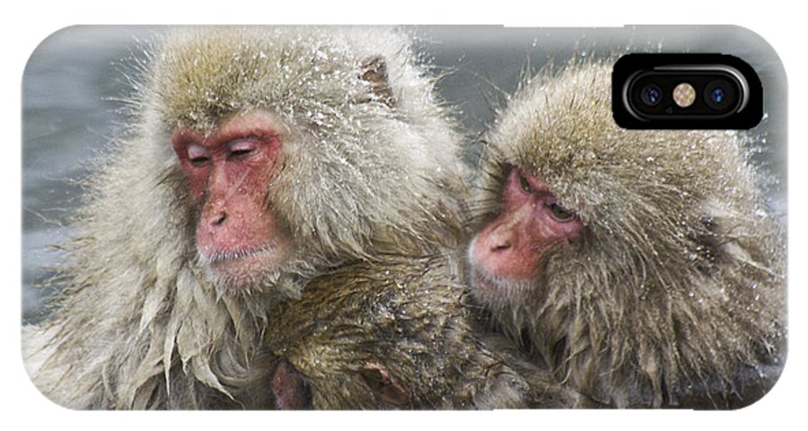 Snow Monkey IPhone X Case featuring the photograph Snuggling Snow Monkeys by Michele Burgess