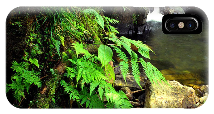 Puerto Rico IPhone X Case featuring the photograph Stream El Yunque National Forest by Thomas R Fletcher