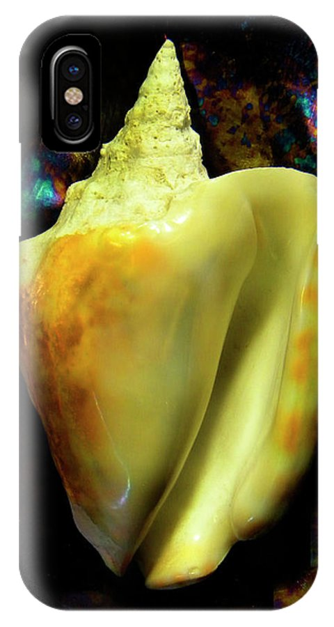 Frank Wilson IPhone X Case featuring the photograph Strombus Inermis Seashell by Frank Wilson