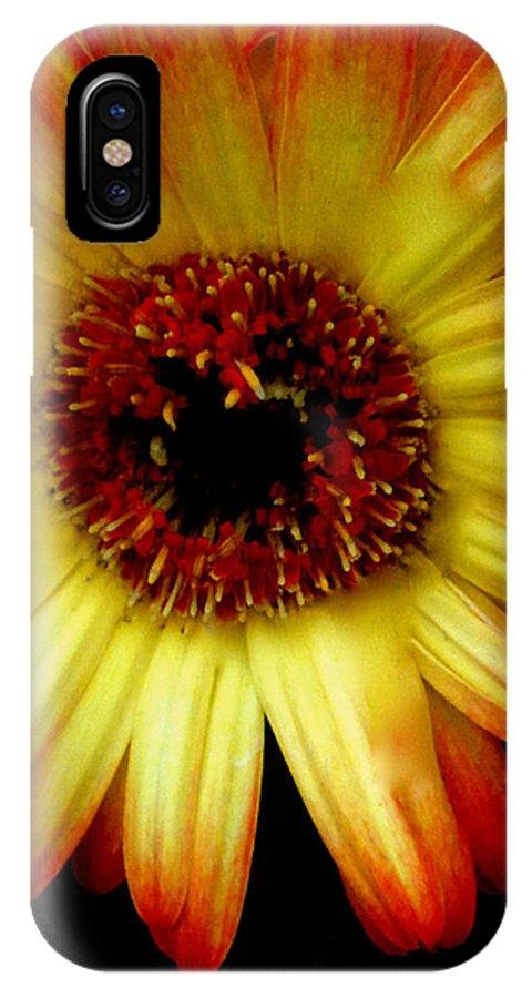 Swish Design IPhone X Case featuring the photograph Swish Design Set by Debra   Vatalaro