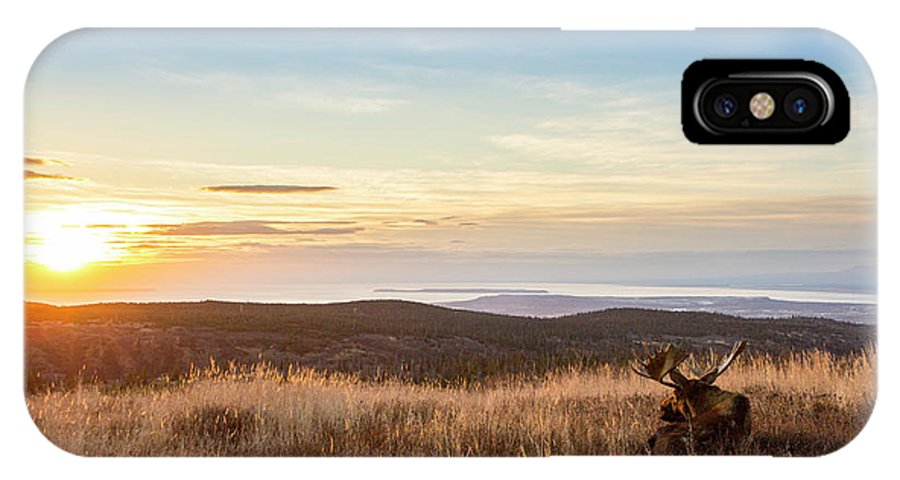 Adult IPhone X Case featuring the photograph Taking In The Sunset by Tim Grams