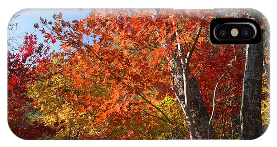 Autumn IPhone X Case featuring the photograph The Colors Of Autumn by Michele Burgess