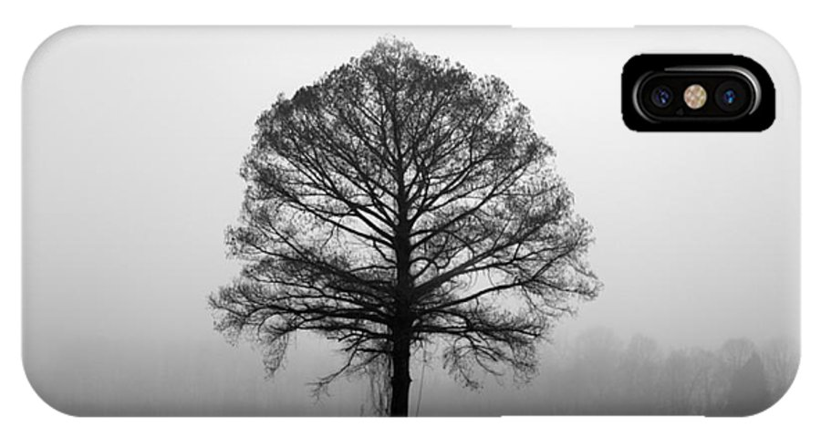 Tree IPhone X / XS Case featuring the photograph The Tree by Amanda Barcon