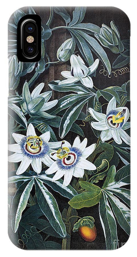 1800 IPhone X Case featuring the photograph Thornton: Passion-flower by Granger
