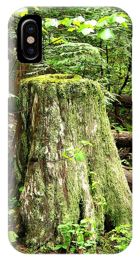 Moss IPhone X Case featuring the photograph Transition by Idaho Scenic Images Linda Lantzy