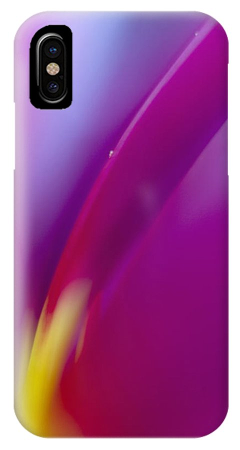 Tulip IPhone X Case featuring the photograph Tulip by Silke Magino