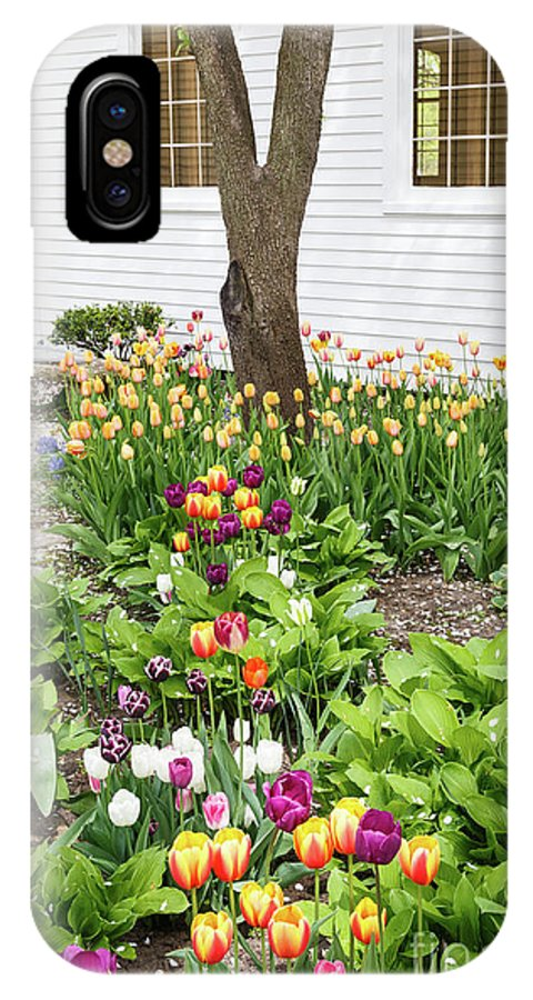 Tulip IPhone X / XS Case featuring the photograph Tulips In The Garden by Terri Morris