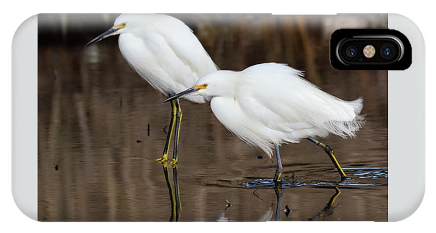 Egrets IPhone X Case featuring the photograph Two Snowy Egrets by Bruce Frye