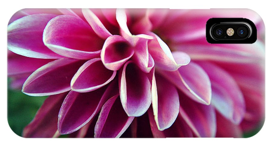 Flower IPhone X Case featuring the photograph Untitled by Kathy Schumann