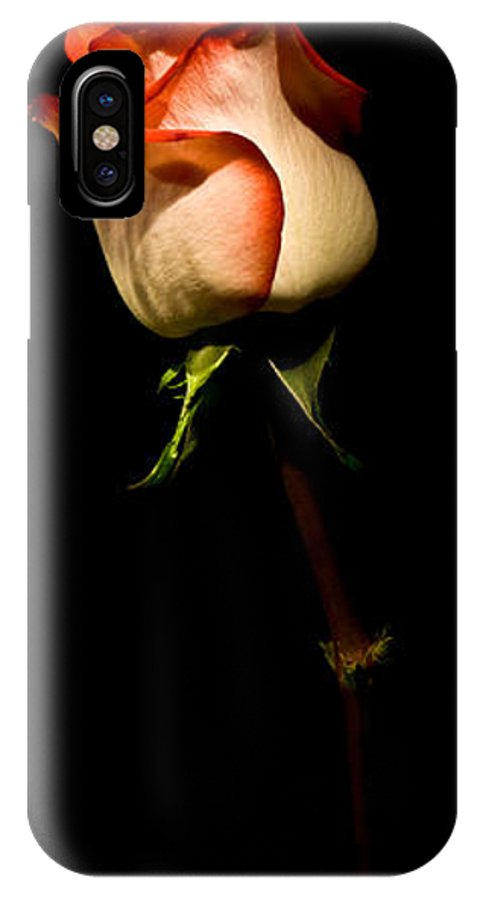 Scent IPhone X Case featuring the photograph Single Rose by Avril Christophe
