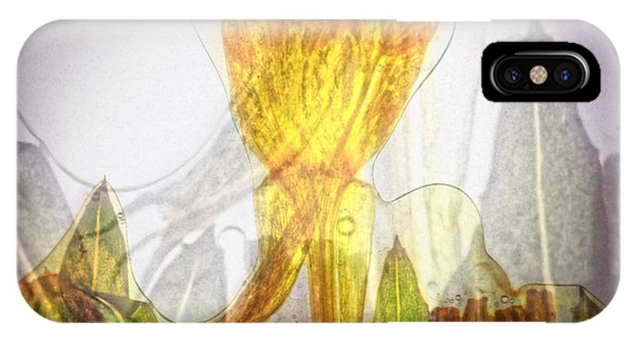 Flower IPhone X Case featuring the photograph 11322 Flower Abstract Series 03 #20 by Colin Hunt