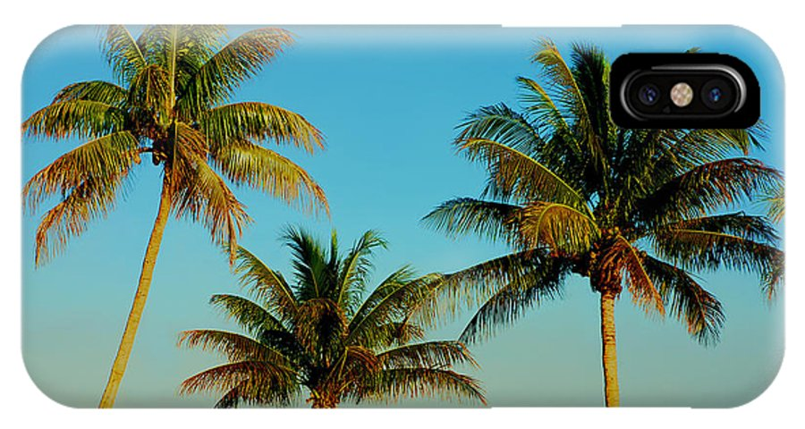 Palm Trees IPhone X Case featuring the photograph 13- Palms In Paradise by Joseph Keane