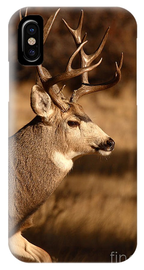 Deer IPhone X Case featuring the photograph 15-point Mule Deer Stepping Along by Max Allen