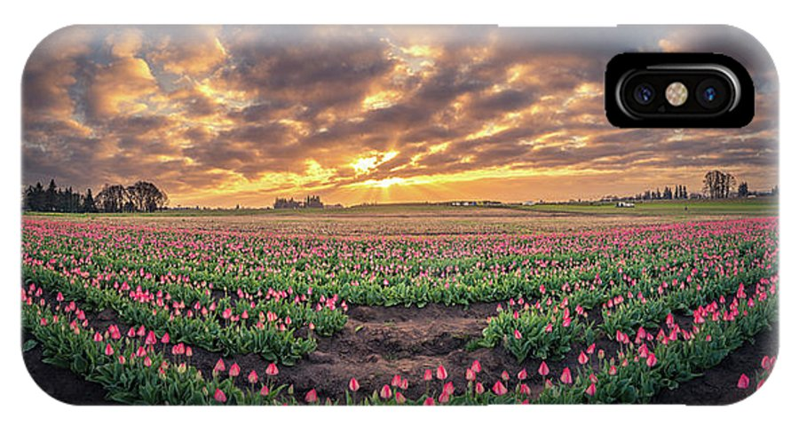 Travel IPhone X Case featuring the photograph 180 Degree View Of Sunrise Over Tulip Field by William Freebilly photography