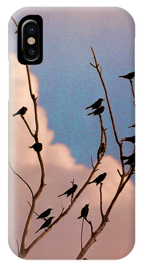 Birds IPhone X Case featuring the photograph 19 Blackbirds by Steve Karol