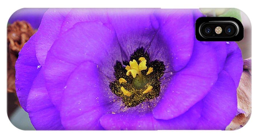 Flowers IPhone X Case featuring the photograph Purple Flower by Elvira Ladocki