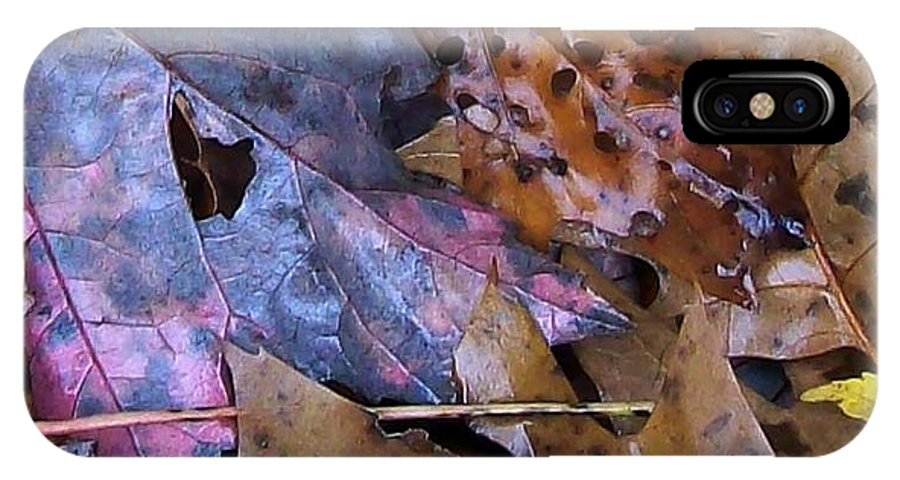 Fall Color Leaf IPhone X / XS Case featuring the photograph Colors Of The Fall by Wolfgang Schweizer
