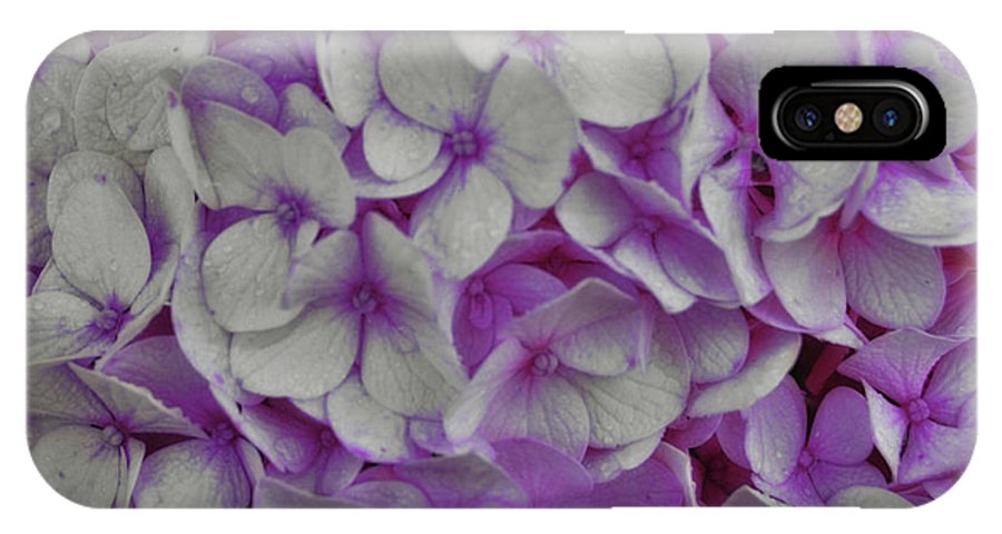 Hydrangea IPhone X Case featuring the photograph Cotton Candy by JAMART Photography