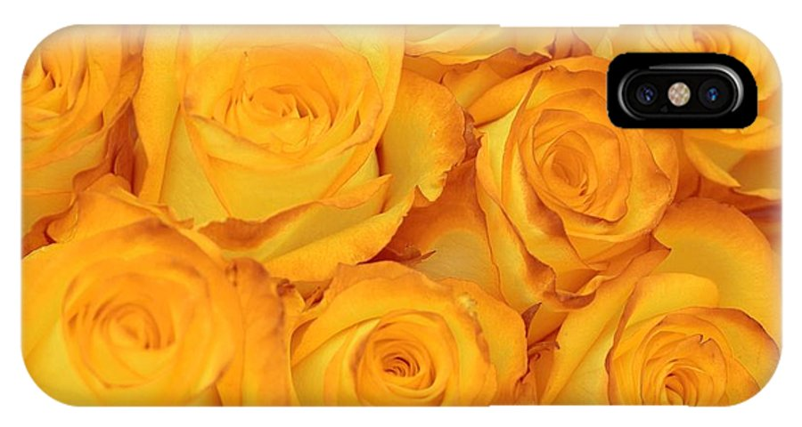 Rose IPhone X Case featuring the photograph Fragile Fire by JAMART Photography