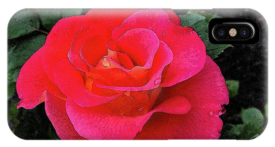 Gorgeous George Red Rose IPhone X Case featuring the mixed media Gorgeous George by Don Wright