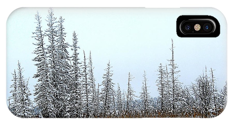 Marsh IPhone X / XS Case featuring the photograph In The Meadow by Roland Stanke
