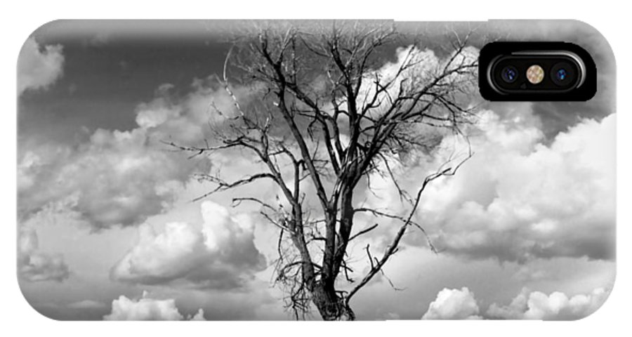 Tree IPhone X Case featuring the photograph Lone Tree by Rich Stedman