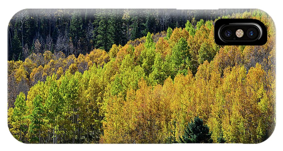 Colorado IPhone X Case featuring the photograph Million Dollar Highway Aspens by Ray Mathis