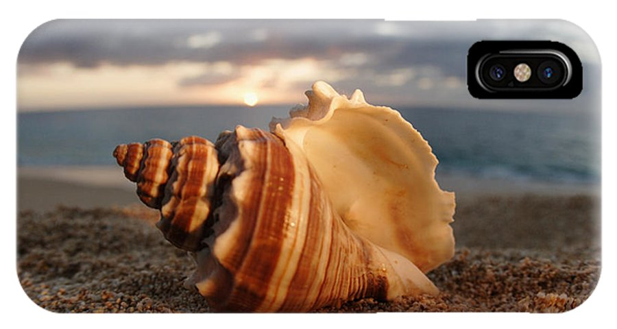 Background IPhone X Case featuring the photograph North Shore Seashell by Vince Cavataio - Printscapes