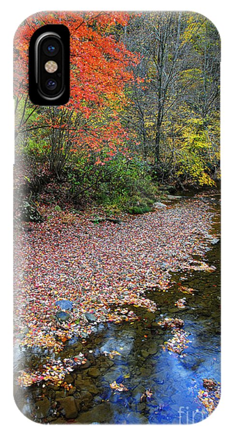 Autumn IPhone X / XS Case featuring the photograph Sugar Maple Birch River by Thomas R Fletcher