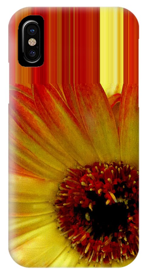 Swish Design IPhone X Case featuring the photograph Swish Design Set by Debra   Vatalaro