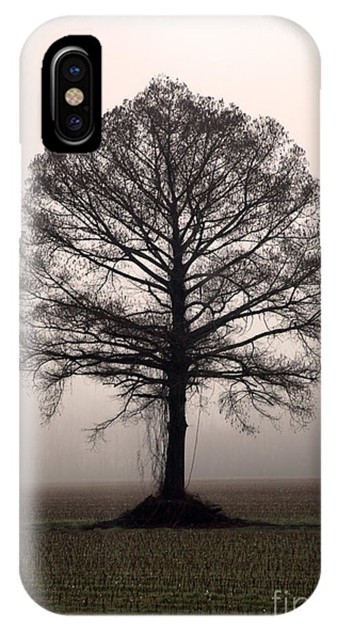 Trees IPhone X / XS Case featuring the photograph The Tree by Amanda Barcon