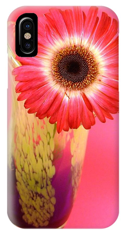 Gerbera Photographs IPhone X Case featuring the photograph 2401c-001 by Kimberlie Gerner