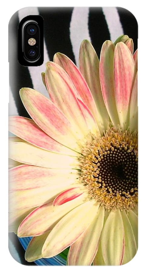 Gerbera Photographs IPhone X Case featuring the photograph 2560c2-004 by Kimberlie Gerner