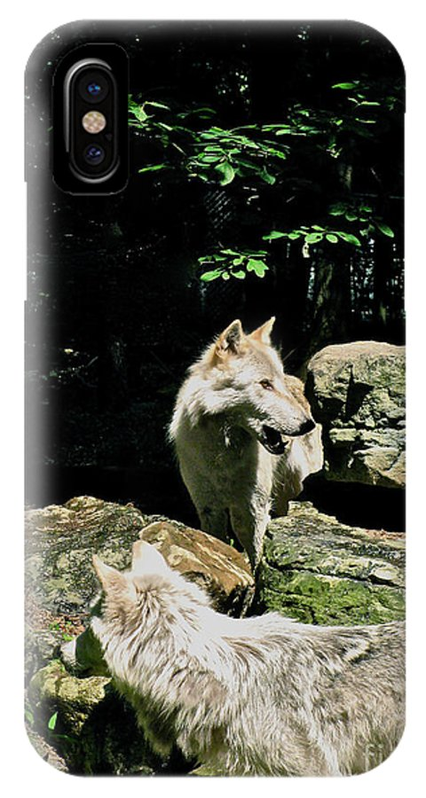 Down By The Water IPhone X Case featuring the photograph The Wild Wolve Group A by Debra   Vatalaro