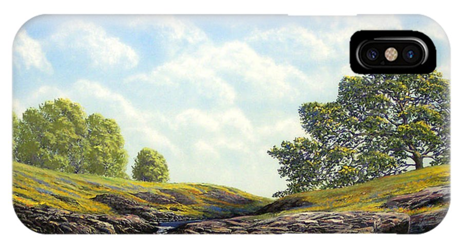 Landscape IPhone X Case featuring the painting Flowering Meadow by Frank Wilson