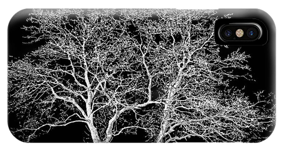 Trees IPhone X Case featuring the photograph Ghost Trees by Jim Smith