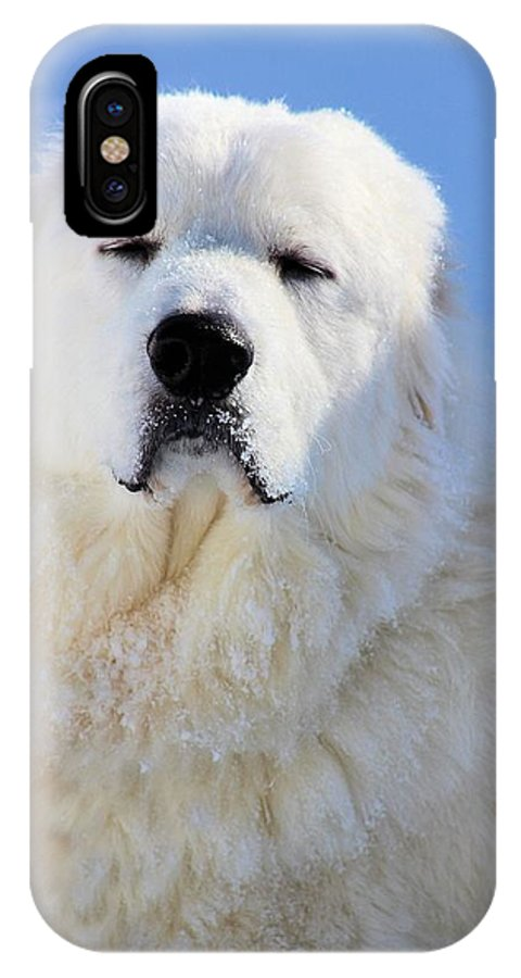 Great Pyrenees IPhone X Case featuring the photograph Great Pyrenees by Roxanne Jones