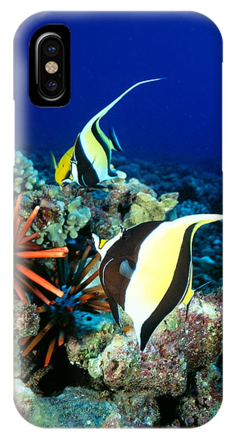30-pfs0056 IPhone X Case featuring the photograph Hawaiian Reef Scene by Dave Fleetham - Printscapes