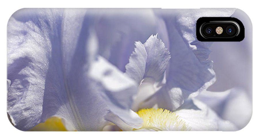 Genus Iris IPhone X Case featuring the photograph Iris Flowers by Tony Cordoza