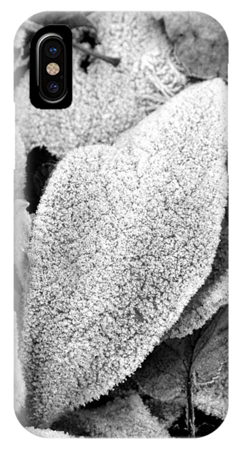 B&w IPhone X / XS Case featuring the photograph Untitled by Kathy Schumann