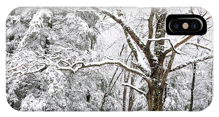 Winter IPhone X Case featuring the photograph Winter In Monongahela National Forest by Thomas R Fletcher