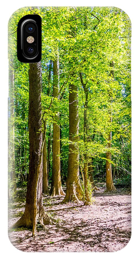 Broken IPhone X Case featuring the photograph cypress forest and swamp of Congaree National Park in South Caro by Alex Grichenko