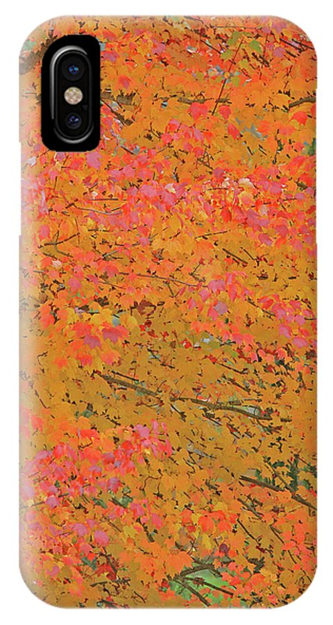 Maple Tree IPhone X Case featuring the photograph 4139 Flaming Maple by Darrel Giesbrecht