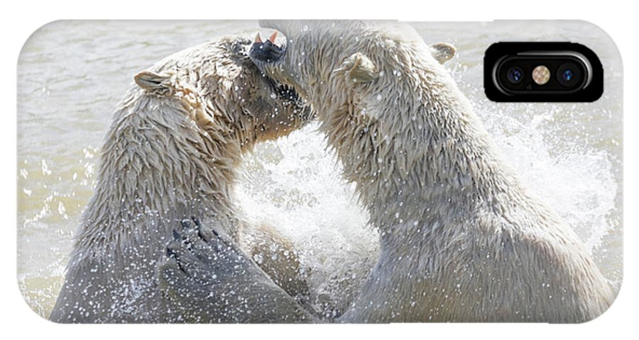 Adult IPhone X Case featuring the photograph Polar Bear by Shaun Wilkinson