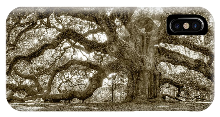Live Oak IPhone X Case featuring the photograph Angel Oak Live Oak Tree by Dustin K Ryan