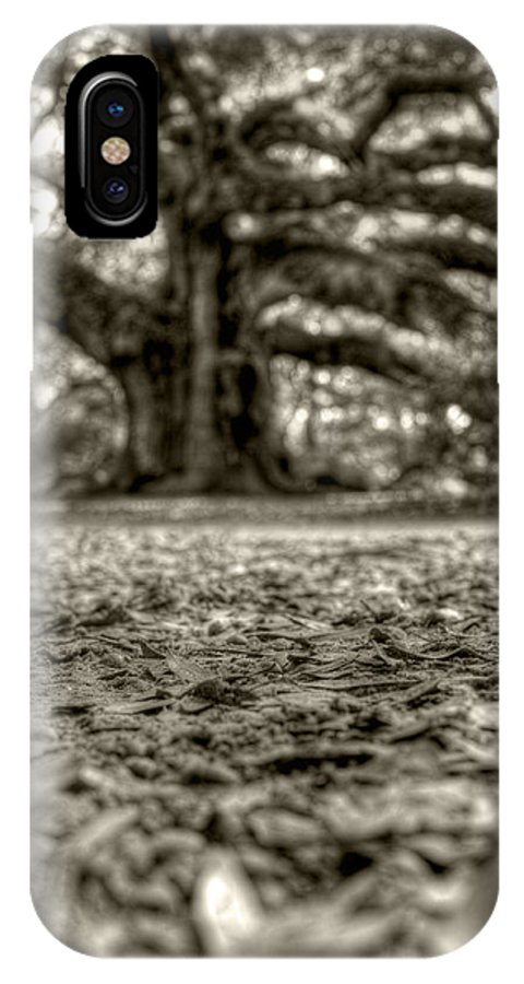 Angel Oak IPhone X Case featuring the photograph Angel Oak Live Oak Tree by Dustin K Ryan